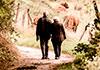 La sociedad que se olvidó del cuidado: pequeños y grandes retos ante el envejecimiento